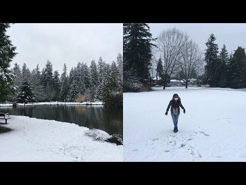 Neve em Vancouver, Estamos voltando para o Brasil, e mais