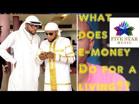 What Does E-money Really Do For A Living?