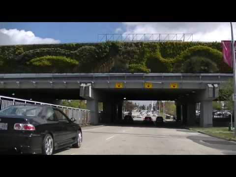 Surrey BC Canada - Driving in the City - Vancouver Suburb Tour