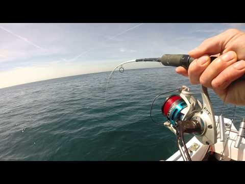 Channel Cod of Salt 15-65g Rod and Cabo 50 F/S